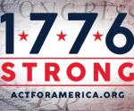 Celebrating 245 Years America!